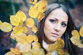 Portrét mladé ženy, obklopené podzimní listí zblízka. — Stock fotografie