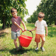 Royalty-Free Stock Photo: Young brothers carrying bucket of cherries outdoors.