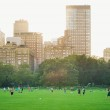 NEW YORK - JULY 1: enjoying relaxing outdoors in Central Park on July 1, 2012 in New York. — Stock Photo #21629235