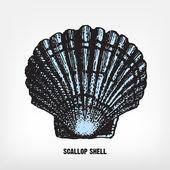 Engraving vintage Scallop shell. — Stock Vector