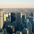 New York City Manhattan skyline view. - 图库照片