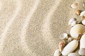 砂と貝殻 — ストック写真