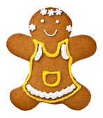 Gingerbread Woman — Stock fotografie