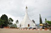 Phrathat Doi Kong Moo — Stock Photo