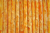 Wood background — 图库照片