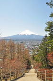 Mount Fuji — Stock Photo
