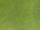 Grass Pattern — Stock Photo