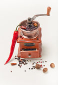 Red pepperand and pepper Mill — Stock Photo