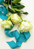 Three white roses with blue ribbon as a gift — Stock Photo