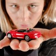 Stock Photo: Car on palm