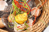 Chicken in a basket — Stock Photo