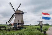 Windmühlen in Marschenlandschaft mit niederländischen Kennzeichen — Stockfoto