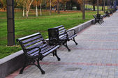 Brown benches with nobody in the park — Stock Photo
