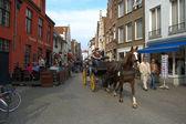 Häst och coach — Stockfoto