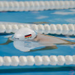 Benjamin Starke swimming Butterfly - Stock Photo