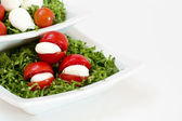 Rajče, zelený slad, olej a italskou mozzarellou — Stock fotografie