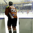 Italian Ice Hockey Premier League — Foto Stock