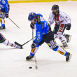 Ice Hockey Italian Premier League — Foto Stock