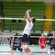 Volley — Stock Photo #17404393