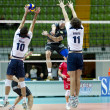 Volley — Stock Photo #17404545