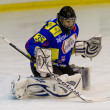 Ice Hockey Goalie - Stock Photo