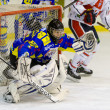 gardien de but de hockey sur glace — Photo