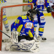 图库照片: Ice Hockey Goalie