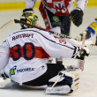 Ice Hockey Goalie — Foto Stock