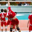 Volley — Stock Photo #19723421