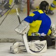 Ice hockey Goalie — Foto Stock #19960623