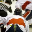 Stock Photo: Ice hockey
