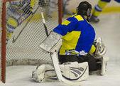 Ishockey målvakt — Stockfoto