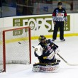 Ice Hockey Goalie — Foto de stock #21268243