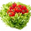 Fresh lettuces salad with fresh  tomatoes — Stock Photo
