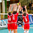 Volley - Stock Photo