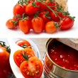 Canned tomatoes  and  fresh cherry tomatoes — Стоковая фотография