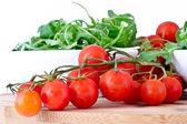 Bowl of fresh green, natural arugula and cherry tomatoes — Stock Photo
