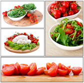 Bowl of fresh, mozzarella and natural arugula and cherry tomato — Stockfoto