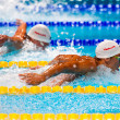 Stock Photo: Chad Le Clos ( RSA)