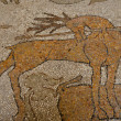 Стоковое фото: Otranto Cathedral: mosaic ground detail - Puglia. South Italy
