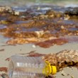 Stock Photo: Waste accumulates on beach