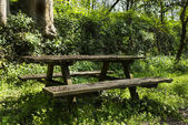 Wooden bench and wooden table — Foto de Stock