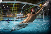 Un portero de waterpolo — Foto de Stock