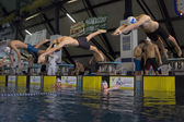 MILAN -AUGUST 2: swimmers  starting  in Swimming Race on August  — Zdjęcie stockowe