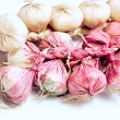 Garlic Violet de Provence — Stock Photo