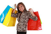 Beautiful Shopping Woman holding a lot of shopping bags looking — Stock Photo
