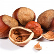 Hazelnuts — Stock Photo #14143828