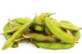 Planta de soya — Foto de Stock