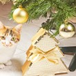 Cat and balls christmas tree — Stock Photo