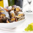 Clams - Stock Photo